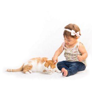 Las mascotas de mi hija
